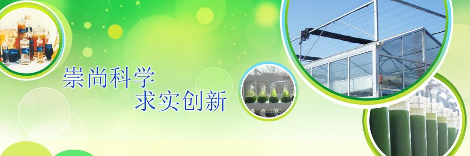 建设世界一流以炼油为主,油化结合的能源型研究院